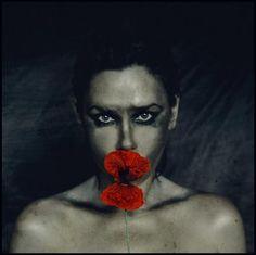 Agnieszka Motyka Photography, Painting, Art, Art Background, Photograph, Fotografie, Painting Art, Kunst, Photoshoot