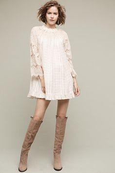 Rory Lace Swing Dress--this dress it too precious and I want it now--imagine the show and tight combo possibilities.