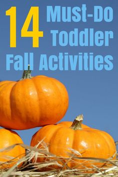 Summer is over, but the fall season is here! 14 must-do toddler fall activities for your family bucket list.
