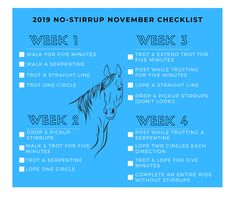 Horse & Rider Magazine offered these challenges for Are you up for it? Trail Riding Horses, Horse Riding Tips, Horse Tips, Horse Training, Training Tips, November Challenge, Horse Exercises, Work Train, Riding Lessons