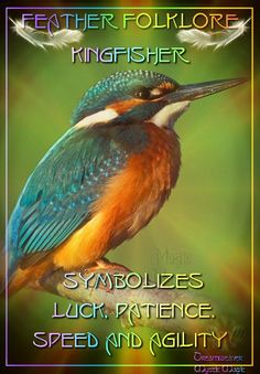 Kingfisher - symbolizes luck, patience, speed and agility - Pinned by The Mystic's Emporium on Etsy Spirit Animal Totem, Animal Spirit Guides, Animal Totems, Wiccan Witch, Witchcraft, Wiccan Spells, Bird Meaning, Witch Photos, Animal Symbolism