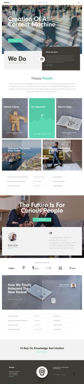 Rodesk - User Experience Design Agency