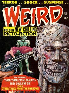 Horror Comics   Titans Terrors & Toys: Eerie Publications' Horror Comics Cover Art ...