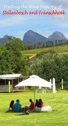 Warwick Wine Estate, Stellenbosch. More here: http://bbqboy.net/visiting-wine-regions-stellenbosch-franschhoek/