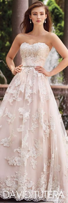 A beautiful blush, strapless re-embroidered Schiffli lace on tulle over chiffon gown. David Tutera for Mon Cheri - 117276 Tala -