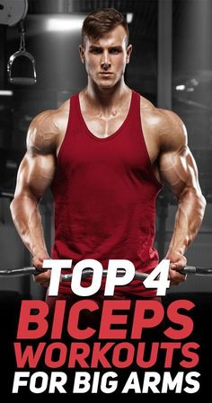 Check out the top 4 biceps workouts for big arms! #fitness #gym #exercise #exercisefitness #exercises #workouts #fit #fitfam