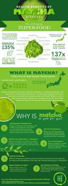 Love matcha every day http://teapavse.com/all-about-tea/best-tea-brands/