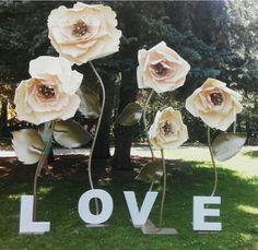 Wedding paper flowers                                                                                                                                                     More