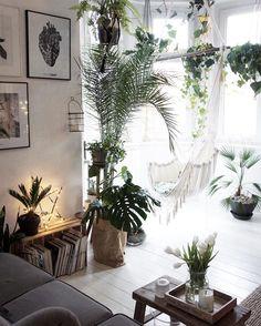 Morning ✨👌🏻🌿 hello 😊👋🏻 . . . . #morning #plants #green #home #homedecor #decoration #design #interiordesign #wnętrza #urbanjungle #greenhouse #goodvibes #livethelittlethings #naturehome #naturelover #palm #fern #walldecor #print #art #artsy