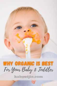 It is so important to know what is in the food that you give your baby and looking into why organic is best for your baby and toddler is a great idea. #Organic #BabyFood #OrganicBaby #OrganicBabyFood #Parenting #Baby #Health #Toddler