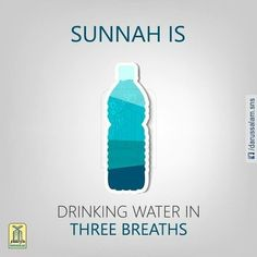 Revive the Sunnah