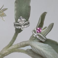 """As sparkling and delightful as a promise, the elegance of these jewellery creations is an ode to femininity: Joséphine """"Eclat Floral"""" rings in platinum, paved with diamonds and set with a cushion-cut diamond of 3.08 carats and a cushion-cut pink sapphire of 1.37 carats."""