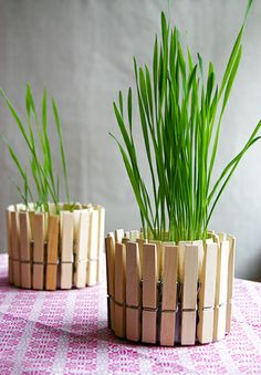 8 chic Easter décor DIYs // Clothespin planter #entertaining #easter #diy #spring