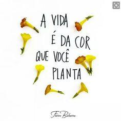 plante um jardim colorido!