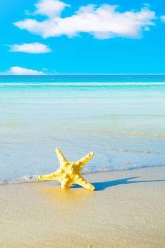 star at sea