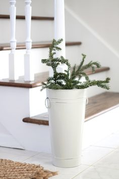 Branches in buckets and vases add a little holiday to a home without effort or cost