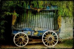 grand old circus wagon. Old Circus, Vintage Circus, Night Circus, Abandoned Amusement Parks, Abandoned Places, The Magic Faraway Tree, Haunted Carnival, Halloween Circus, Halloween Party