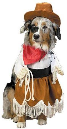 Cowgirl Dog Halloween Costume