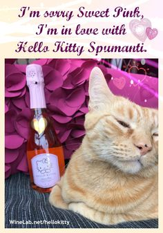 Hello Kitty Spumanti Wine *click to order*
