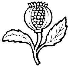 Результат пошуку Google на запит http://gocek.org/christiansymbols/images/pomegranate.gif