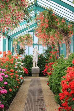 Fertility Goddess - King of Belgium's Greenhouse