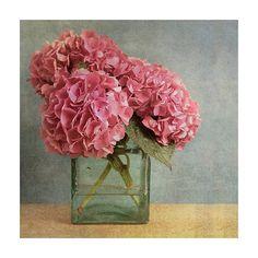 Hydrangea photo print pink hydrangea by KataniaDesigns on Etsy