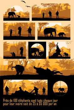 Près de 100 éléphants sont tués chaque jour pour leur ivoire soit de 25 à 35 000 par an