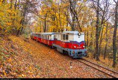 RailPictures.Net Photo: Mk45 2002 Hungarian State Railways (MÁV) Mk45 at Budapest, Hungary by Joó Ádám