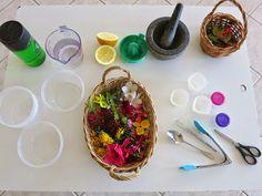 Sensory Nature Table Investigation. Invitation to Play.
