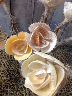 Seashell Flowers make great Wedding Flowers! Straight from a Mermaid's Garden. These beautiful handmade flowers are made from natural seashells. All colors are Seashell Ornaments, Seashell Art, Seashell Crafts, Beach Crafts, Flower Crafts, Crafts With Seashells, Seashell Wreath, Ocean Crafts, Crafts For Teens To Make