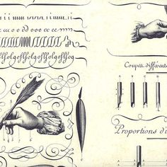 Made In Italy Authentic Florentine Paper Handwriting Calligraphy Alphabets