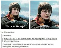 what exactly is hufflepuff