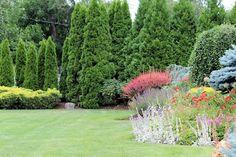 Garden Bloggers' Bloom Day & Foliage Follow-Up: July 2016 Long Island Garden in Bloom!