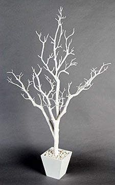 3 Foot White Centerpiece Tree in Decorative Pot BOC Select http://www.amazon.com/dp/B007CEW8Q6/ref=cm_sw_r_pi_dp_GTSAub0M71YV5
