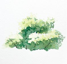 Watercolor Bushes and Trees in 4 Easy Steps Watercolor Paintings Tumblr, Tree Watercolor Painting, Watercolor Paintings For Beginners, Easy Watercolor, Watercolour Tutorials, Watercolor Landscape, Photomontage, Bush Drawing, Watercolor Architecture