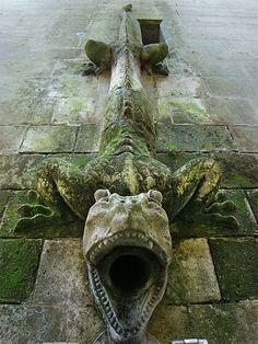 Donjon drain-pipe at Château de Pierrefonds, Oise, Picardy, France Castle France, Ange Demon, 12th Century, Green Man, Architecture Details, Gothic Architecture, Dragons, Places To Go, Fine Art