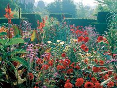 Nearly 10 years on from the death of the great Christopher Lloyd, the garden he created at Great Dixter in Sussex has retained all its joy, exuberance and subversiveness Vita Sackville West, Beautiful Flowers Garden, Beautiful Gardens, Gaudi, Lancaster, Plant Design, Garden Design, Patio Design, Monet