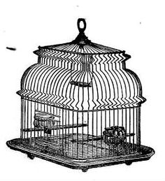 Victorian Bird Cage Clip Art | ... of the old style bird cages. Great in bird and nature themed art work