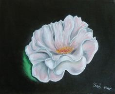 created by: Szöllős  Éva - rose - oil, canvas  (Original painting: The Beauty of Oil Painting Series 1, Episode 5: English Roses, Farbi Flora Television , Youtube)