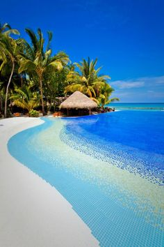 Paradise complete with crystal clear water and swaying palm trees in the background