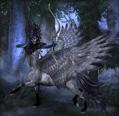 Gorgon / Centaur / Pegasus mashup