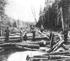 running logs 10