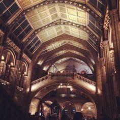 Laura Jefferies on Twitter: Night at the museum @NHM_London #museumlates #SU2014