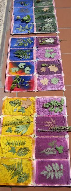 Sun Prints on fabric then stitched to make a hanging panel/quilt? AWESOME!