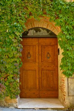 Tuscany, Italy - Door in Vines | Igor Menaker Fine Art Photography