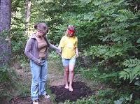 Bildergebnis für Wald blind weg Blinde, Woodland Forest