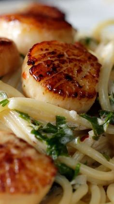 Knoblauchbutter Jakobsmuscheln - seafood recipes for dinner Fish Dishes, Pasta Dishes, Main Dishes, Beef Dishes, Cooking Recipes, Healthy Recipes, Cooking Time, Garlic Recipes, Healthy Scallop Recipes
