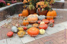 Thanksgiving: 30 Days of Gratitude, Day 26 - stumbler Gratitude Day, Happy 2015, 30 Day, Thanksgiving, Thankful, Pumpkin, Pumpkins, Thanksgiving Tree, Squash