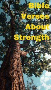Bible Verses About Strength – Bible Verse Lists Scriptures About Strength, Bible Verse List, Bible Verses About Strength, Gods Strength