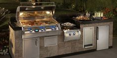 Apollo Outdoor Kitchens... these guys make Food Carts too!